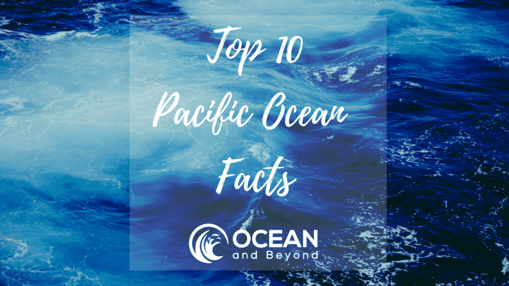 10 Facts about the Pacific Ocean