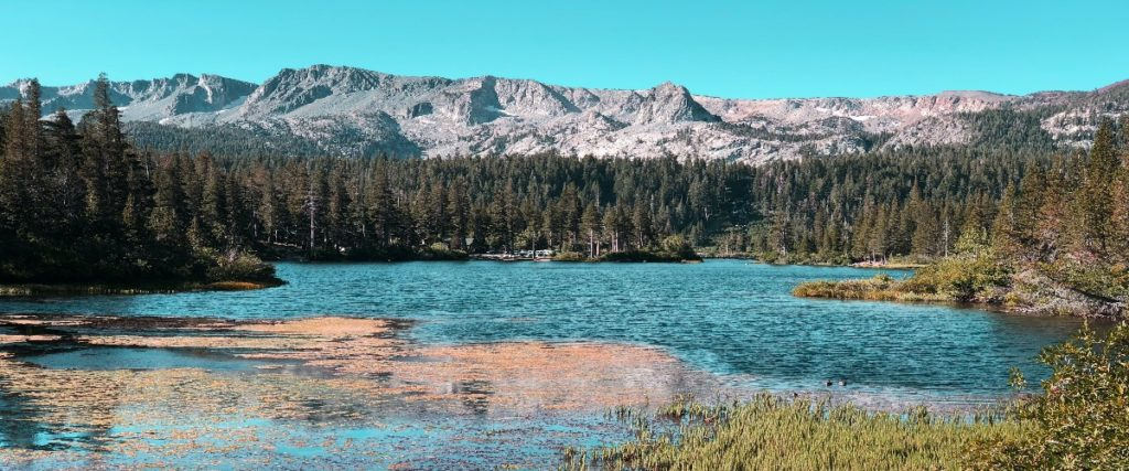 The Mono Lake (California)