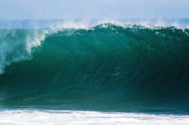 Largest Waves Surfed