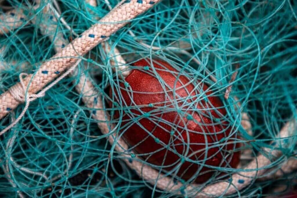 Netting on a beach